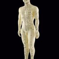 Prøv akupunktur på egen krop i dag!